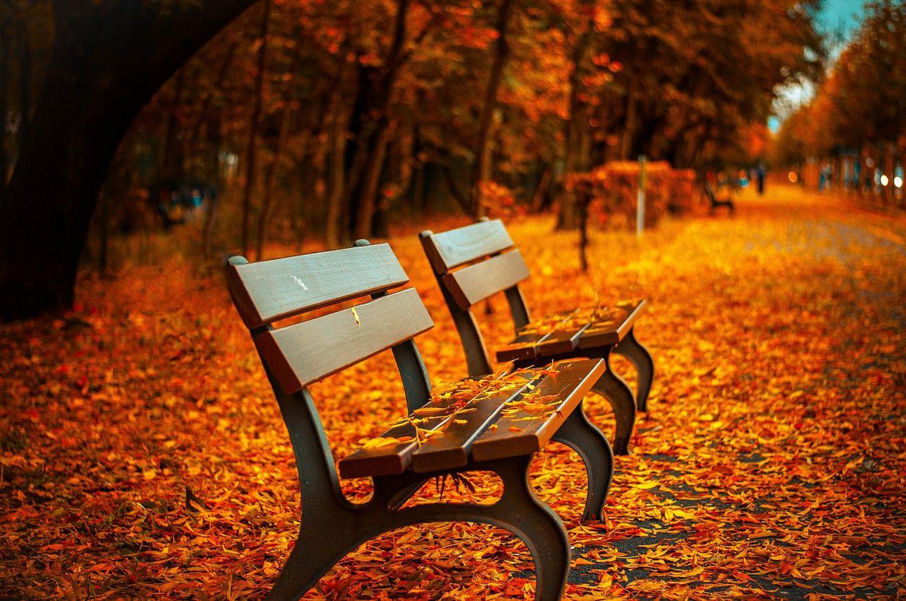autunno, come sopravvivere al cambio di stagione